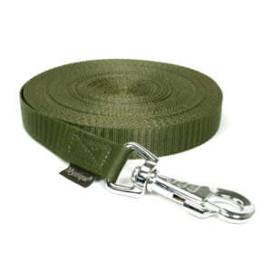 Mystique Tracking Leash Khaki